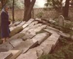 Oswiecim Jewish Cemetery in July 1979.